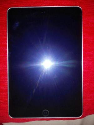 Ipad Mini 2 Retina, 16 gigas de almacenamiento, 7 Meses de