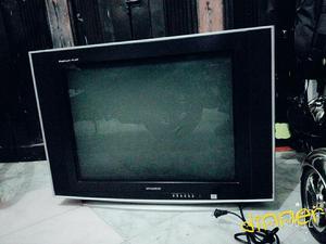 Vendo Televisor De.29 Pulgadas