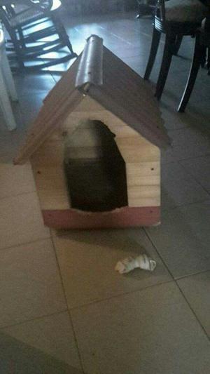 Casa de Segunda para Mascota Pequeña.