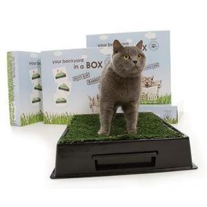 El Sistema De Entrenamiento Del Animal Doméstico Loo Kitty