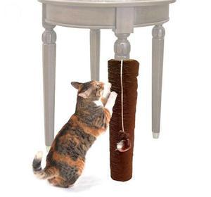Gimnasio Rascador Gato Deporte Animal Pelota Accesorio