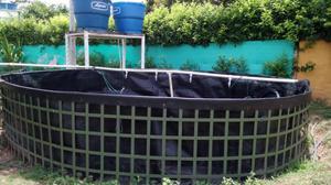 Sistema superintensivo de cria de mojarra tilapia posot for Tanques para cachamas