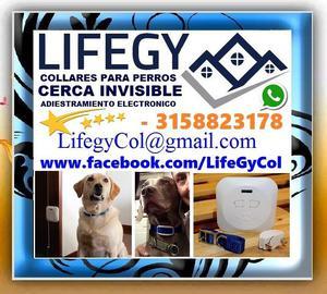 LIFEGY, Collares, Collar Para Entrenar PERROS, Con Cerca
