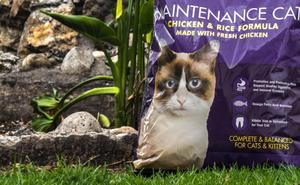 Comida para gato kirkland super premium, 11.5Kg