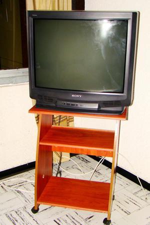 Vendo Televisor Sony 29 Pulgadas con Mesa