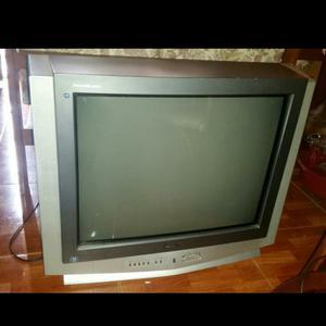 Televisor Marca Panasonic 21 Pulgadas