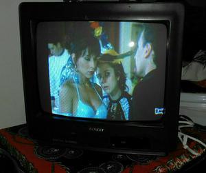 Tv Sankey 14 con Control.