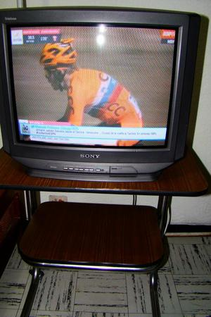 Vendo Televisor Sony 21 Pulgadas Triniton
