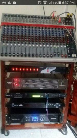 Vendo Equipo de Sonido Profesional