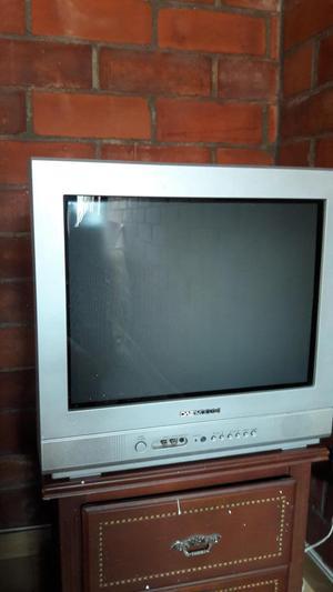 SE VENDE TELEVISOR EN EXCELENTE ESTADO Y POCO USO