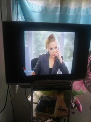 Televisor. Lg de 21 Pulgada