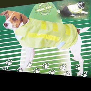 Del Ahorrador Del Perro Del Animal Doméstico Chaleco Salvav