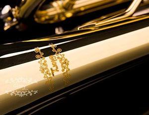 Trompeta Gloria Con Pro Caso Y Kit Para El Cuidado Oro