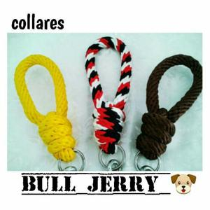 Collares Bulljerry