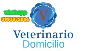 Veterinario a Domicilio Popayan
