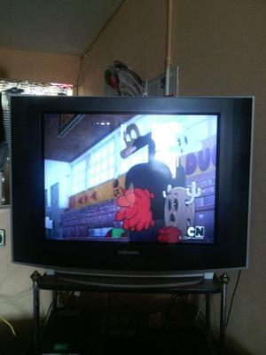 Vendo Televisor Grande De 29 Pulgadas Con Su Control
