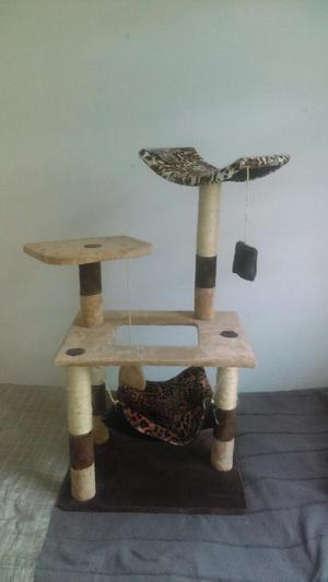 Gimnasio para gatos medell n posot class for Gimnasios baratos