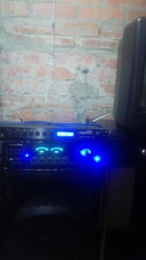 Vendo Amplificador Audio Pro Mi Wha