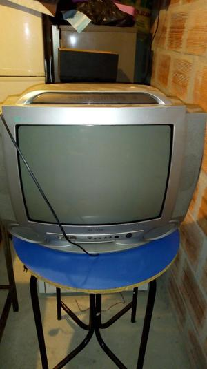 Se Vende Televisor de 21 Pulgadas