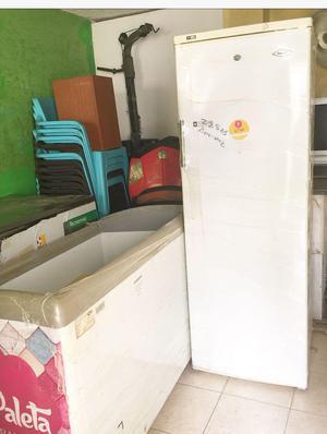 Congelador vertical Electrolux 275 Lts