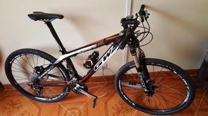 Biciclta en Carbon Gw