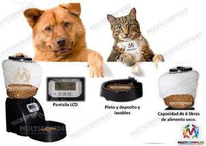 Dispensador Comida Gato Perro Mascota Casa Automatico