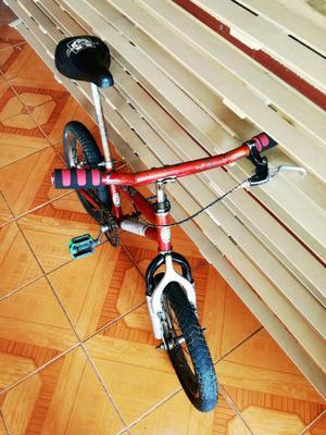 Gangazo Bicicleta Pequeña