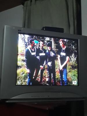 Se Vende Tv 29 Pulgadas Panasonic