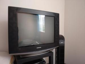 televisor samsung slim fit 21 pulgadas
