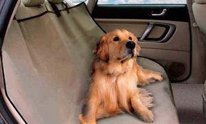 Forro Protector Sillas Para Carro Mascotas Beige