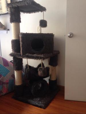 Rascador Nuevo para Gatos
