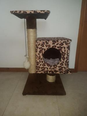 Se Vende Gimnasio para Gato
