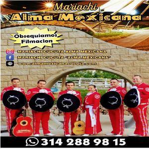 Mariachi Show de Cúcuta 3142889815 - Cúcuta