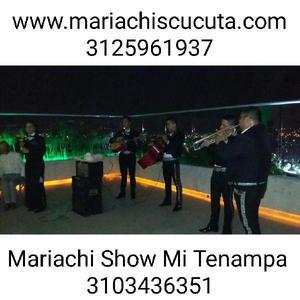 Mariachi en Cucuta - Cúcuta