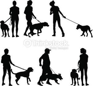 Paseo de perros por horas