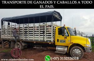 TRANSPORTE DE GANADOS Y CABALLOS EN TODA COLOMBIA