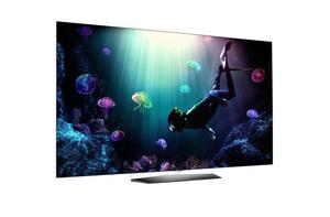 TELEVISOR LG OLED 4K 65 HDR WIFI SMART TV HDMI USB WEBOS 3.0