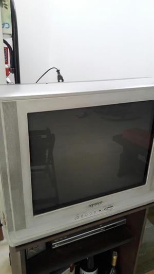 Vendo Televisor Y Minicomponente