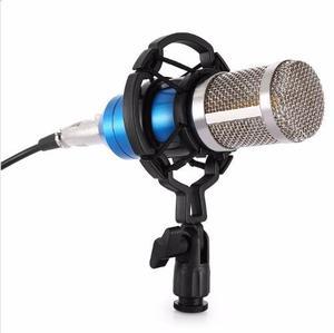 Microfono Condensador Profesonal Estudio De Grabacion Bm-800