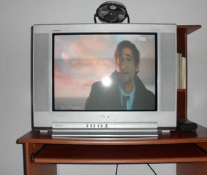 TELEVISOR CONVENCIONAL SONY TRINITRON 21 VENTA/CAMBIO