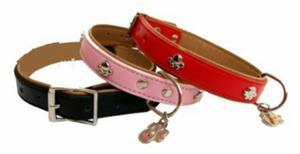 Hermosos collares de modas posot class for Accesorios para mascotas