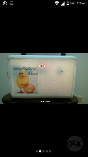 Incubadora para Aves
