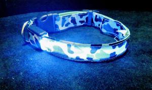 Venta De collares LED Para Perros