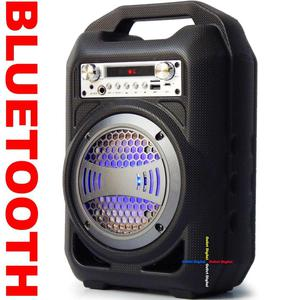 Parlante recargable Bluetooth contra golpes entrada