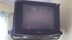 Televisor 21 pulgadas samsung