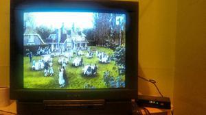 Vendo Tv Sony con Tdt