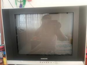 Vendo Televisor 21 Pulgadas