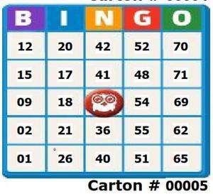 Cartones desechables para bingo, personalizado.