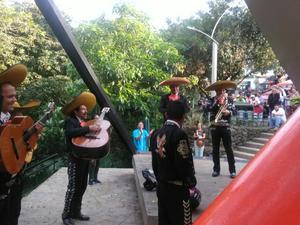 Mariachi Alteños de Mexico Medellin