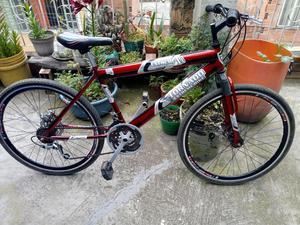 Bicicleta Todo Terreno con 2 Freno Disco